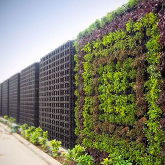 Vertical gardens bring greenery everywhere